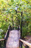 Steel textured stairs with handrails and park lamp. Stairs in the park, colorful trees, fall royalty free stock photography