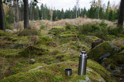 Steel thermos on a rock in forest Royalty Free Stock Photography