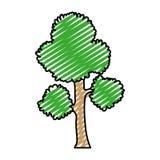 Steel van de takkenbladeren van de krabbel de exotische boom vector illustratie