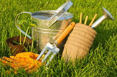 Steel watering can, gardening gloves, rakes and cucumber seedlin Royalty Free Stock Image