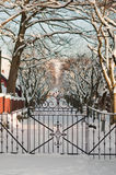 Steel wicket to the winter garden. Stavanger, Norway. Unusual vestcoat winter. Iron gates royalty free stock images