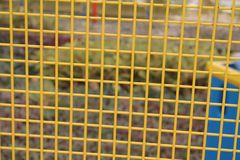 Steel yellow nets with blurry background for web site or mobile devices Stock Image