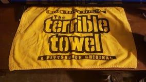 Steelers-Fan lizenzfreie stockbilder