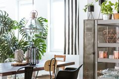 Steely furniture in a dining room. With stripped wall Stock Photos