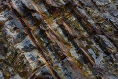 steen Stock Afbeelding