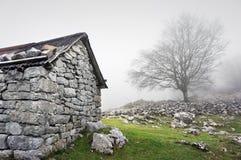 Steen in berg wordt afgeworpen die Royalty-vrije Stock Foto's