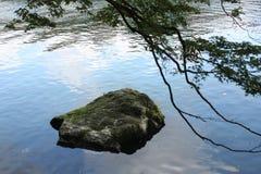 Steen in de rivier Royalty-vrije Stock Afbeeldingen