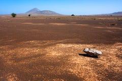 Steen in de woestijn Royalty-vrije Stock Afbeelding