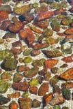 Steen in duidelijk water Stock Foto's
