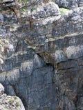 Steen en de geologie Royalty-vrije Stock Afbeeldingen