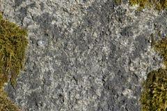 Steen en mosoppervlaktetextuur Royalty-vrije Stock Fotografie