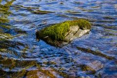 Steen en water Stock Foto's