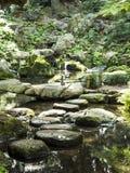 Steen en water in Riykugien-Tuin, Tokyo Stock Fotografie
