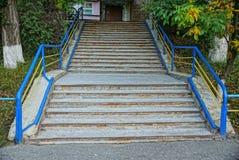 Steen grijze stappen op een oude concrete trap met leuningen in het midden van groene vegetatie stock foto's