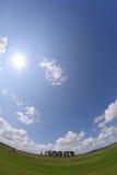 Steen henge in Amesbury Engeland stock fotografie