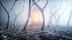 Steen het gillen hoofd in de de bosvrees en verschrikking van de mistnacht Mistycconcept Halloween het 3d teruggeven stock illustratie