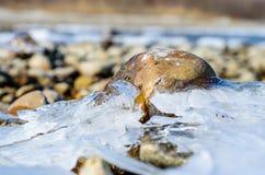 Steen in het ijs. Royalty-vrije Stock Fotografie
