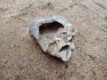 Steen met textuur op het zand geweven behang als achtergrond, strand Oceaan royalty-vrije stock afbeeldingen