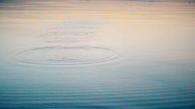 Steen op water wordt afgeroomd dat stock videobeelden