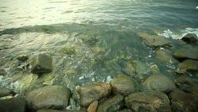 Steen overzeese kust en golven stock video