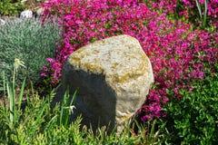 Steen in tuin Stock Foto