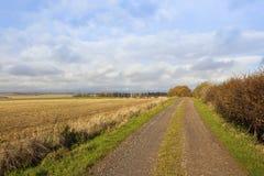 Steenachtig landbouwbedrijfspoor Stock Foto