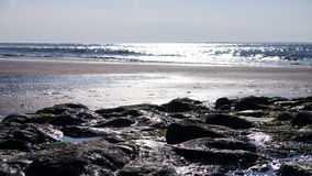 Steenachtig strand Stock Afbeelding