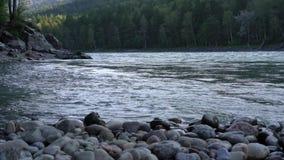 Steenachtige bank van een bergrivier stock footage