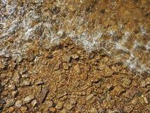 Steenachtige bodem van de rivier stock fotografie