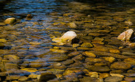 Steenachtige bodem van een schone bergrivier Royalty-vrije Stock Afbeeldingen