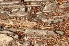 Steenachtige Bosgrond met geweven bladeren en takjes Royalty-vrije Stock Foto