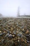Steenachtige ijzige rivierbank in mist Royalty-vrije Stock Fotografie