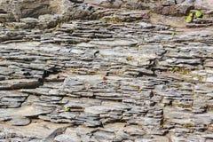Steenachtige kust van een bergrivier Stock Afbeeldingen