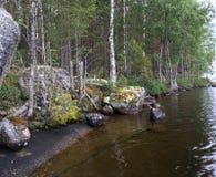 Steenachtige kust van het meer royalty-vrije stock foto's