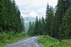 Steenachtige landweg in bergen met luchtmening van onderstel Hoverla - de Oekraïne Stock Fotografie