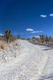 Steenachtige Lege Weg in het Nationale Park van de Doodsvallei in Californië, de V.N. Royalty-vrije Stock Foto's