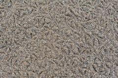 Steenachtige textuur Stock Afbeelding