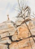 Steenbok, der über einer Klippenwand schaut Lizenzfreie Stockbilder
