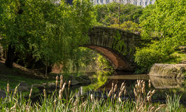 Steenbrug in Central Park Royalty-vrije Stock Afbeelding