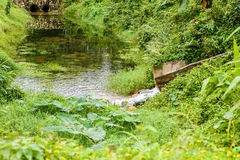 Steenbrug en waterweg Stock Afbeeldingen