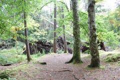 Steenbrug in Invermoriston in de Hooglanden Stock Fotografie