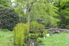 Steenbrug over stroom in gemodelleerde Engelse tuin Royalty-vrije Stock Afbeelding