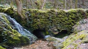 Steenbrug over waterstroom in zwart bos stock fotografie