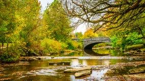 Steenbrug in park het plaatsen Stock Afbeeldingen