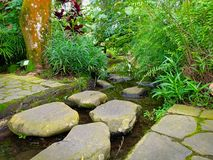 Steengang in de tuin stock afbeeldingen