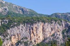 Steenheuvels of bergen met wild struikgewas Stock Afbeelding