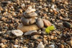 Steenhoop en algen op het strand Royalty-vrije Stock Foto