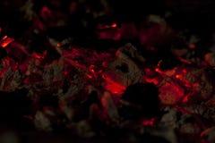 Steenkolen in de grill Royalty-vrije Stock Fotografie