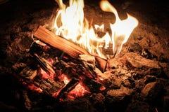 Steenkolen van een kampvuur in het bos stock afbeelding