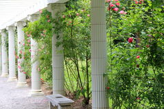 Steenkolommen en banken in roze tuin Stock Foto